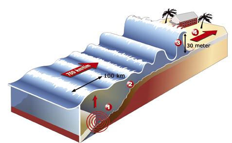 Tsunamigrafik