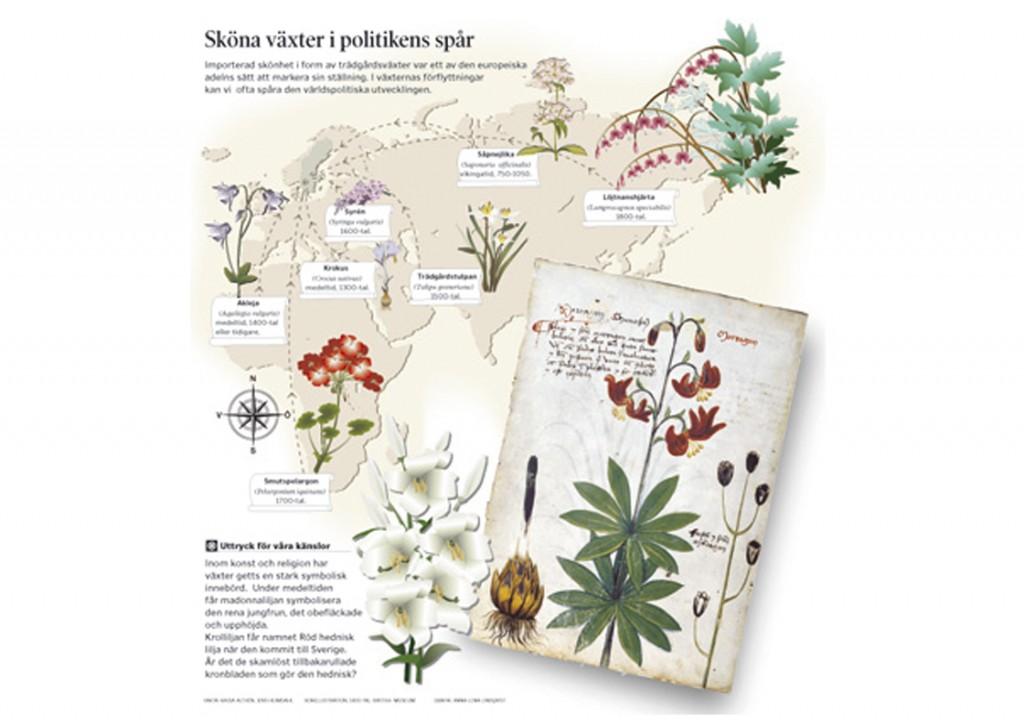 Växter från öst SVD