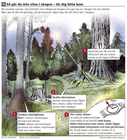 Vilse i skogen illustration