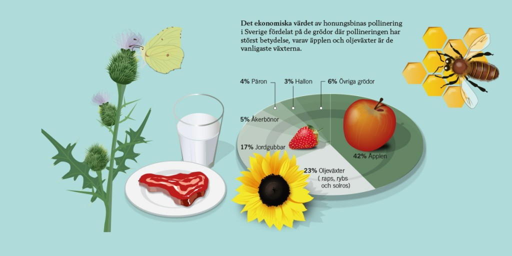 Infografik3